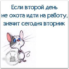 #правдажизни #юмор #позитив #вторник