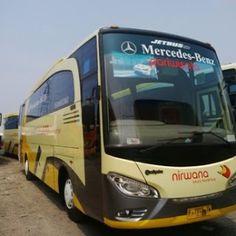 Sewa Bus Solo Seat 60