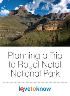 In the British Royal Family took a leisurely trip to South Africa and stayed at Natal National Park where Princess Elizabeth, now Queen Elizabeth II, . Cruise Vacation, Vacation Trips, Vacations, Princess Elizabeth, Queen Elizabeth, Family Camping, Camping Tips, European Tour, Rv Parks