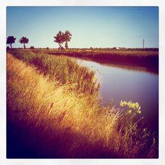 Sile river close to the Venice Lagoon