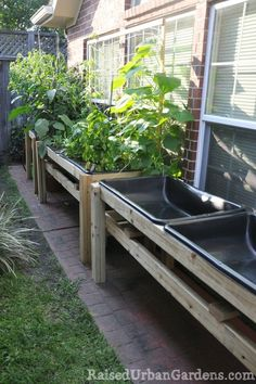How to garden in a tiny yard... Oh my goodness, these are cement mixing trays (Home Depot) & they are about $14 each. I have one as my duck's pool. :)