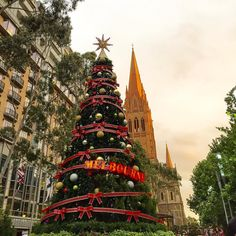 1st December and we're in Melbourne!   #tmmtravels #australia #melbourne #christmascountdown #1stdecember #celebrate #city #travelgram #excited #igtravel #travelblogger by millykr