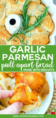 Garlic Parmesan Pull