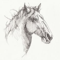 Inktober Day 13 Ren Faire horse for Vonnie. Inktober, Sketches, Horses, Drawings, Art, Art Background, Kunst, Horse, Performing Arts