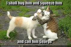 I shall hug him and squeeze him  and call him George