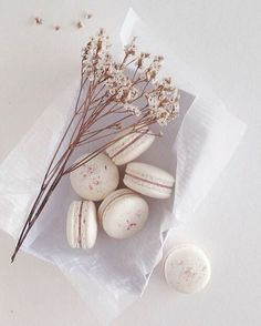 Have some macaroons? Cute Food, Yummy Food, Cookie Recipes, Dessert Recipes, Macaron Cookies, French Macaroons, Cupcakes, Perfect Food, Belle Photo