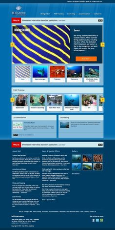 Bali Diving Academy Website Design - Portfolio - Lumonata