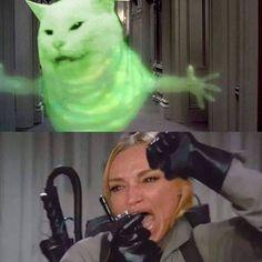 60 Crying Cat Memes ideas | cat memes, cats, memes