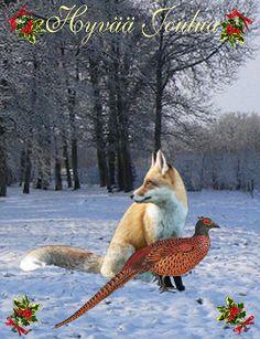 Finland - Customised Christmas Cards Fine Art America
