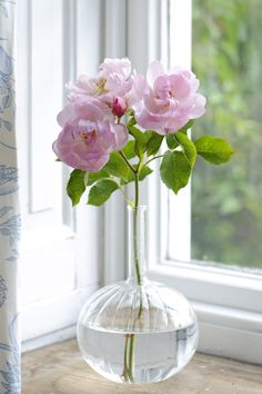Pale pink roses in a clear vase. Easy To Grow Flowers, List Of Flowers, Growing Flowers, Pretty Flowers, Planting Flowers, Beautiful Flower Arrangements, Floral Arrangements, Deco Floral, Rose Cottage