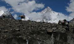 """S dokumentem Cesta vzhůru se pereme už 2 roky. Je to taková naše filmařská osmitisícovka. V tuto chvíli se nacházíme někde nad čtvrtým výškovým táborem a zatímco naši hrdinové svých vrcholů již dosáhli, nám k tomu našemu (premiéra v kinech na jaře 2015) chybí odhadem ještě """"300 metrů"""". Mount Everest, Mountains, Nature, Travel, Cinema Movie Theater, Voyage, Trips, Viajes, Naturaleza"""