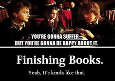 Harry Potter series! You're gonna suffer, but you're gonna be happy about it