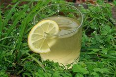 Vannkefir, fruktkefir eller kefir de fruit er en sprudlende og frisk drikk som du lager selv av kefirkorn. Les om helsefordeler, hvordan du lager vannkefir, oppbevaring av kefirkorn. kurerer mageproblemer og mye mer.