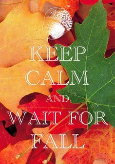 keep calm and wait for fall / created with Keep Calm and Carry On for iOS #keepcalm #fallLeaves