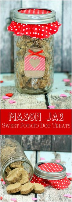 Mason Jar Dog Snacks Homemade Dog Treat Recipe