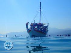 Griechenland Urlaub und Reisen 2021 kreta Mykonos Greece, Crete Greece, Athens Greece, Fishing Holidays, Sailing Holidays, Beautiful Islands, Beautiful Beaches, Sailing Trips, Heraklion