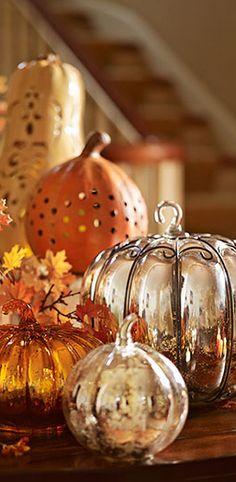 Autumn Decor | Buyer Select