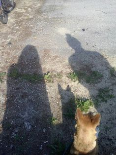My best friend Kasia and my lonely dog Viki... I love you.