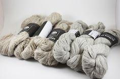 Ravelry: ceylangul's Isager Strik Spinni (Wool 1)