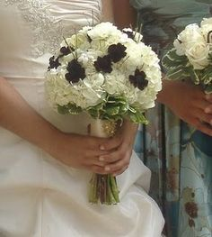 Chocolate Cosmos stand out in this bouquet of white hydrangeas and roses with variegated pitt foliage