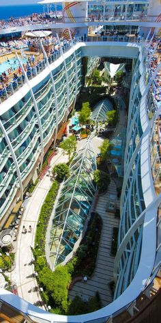 Oasis of the Seas   For a break from all the action, take a stroll through the lush Central Park garden that features 13,000 plants.