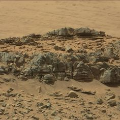 NASA Totally Found an Alien Crab on Mars and Didn't Tell Anybody - Alien UFO Sightings