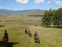 2019 Trips > Kazakhstan Horse Trek < Zavkhan Trekking Wide World, Kazakhstan, Horse Riding, Asia Travel, Trekking, Trips, Hiking, Country Roads, Horses