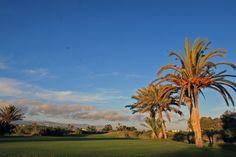 Tikida Golf Palace *****  - Golf du Soleil