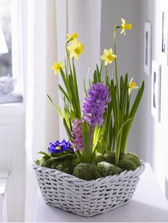 Small arrangement of daffodils and hyacinths