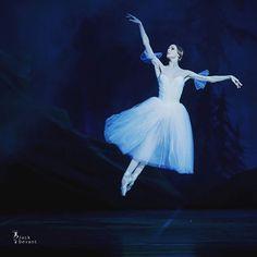 Svetlana in Act II of Giselle//Светлана в Законе второй Gisell @avagyurcsik