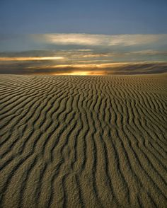 Lancelin Sand Dunes | Western Australia (by Tati@)