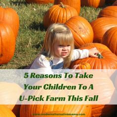 5 Reasons To Take Your Children To A U-Pick Farm This Fall