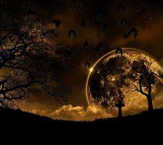Image via We Heart It #moon #moonlight #night #kurd #kurdistan