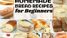 Easy Homemade Bread Recipes for Beginners~ from sweet to savory, quick breads to yeast breads, you're going to want to START HERE. Most popular easy bread recipes we can't get enough of. If you want to make bread, START HERE! Best Zucchini Bread, Zucchini Bread Recipes, Quick Bread Recipes, Zucchini Bars, Beginners Bread Recipe, Recipes For Beginners, Homemade Biscuits Recipe, Biscuit Recipe, Homemade Cornbread