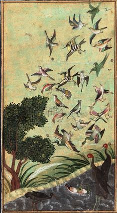 Birds at Baran, possibly from the Babur-nama late century Mughal dynasty Color and gold on paper H: W: cm India Gift of Charles Lang Freer Mughal Paintings, Islamic Paintings, Indian Paintings, Sculpture Textile, Bird Illustration, 16th Century, Bird Art, Islamic Art, Indian Art