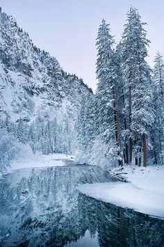 Yosemite National Park, California, United States of America.                                                                                                                                                                                 More