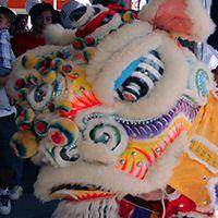 Luen Fat Cheung Lion Dance, Chinese Culture, Martial, Lions, Dragons, Asia, Fat, Museum, Lion