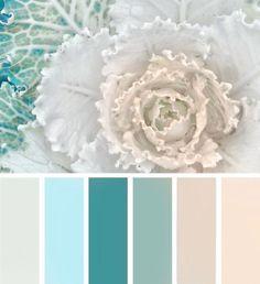 Design seeds - help pick colors for presentations Colour Pallette, Color Palate, Colour Schemes, Color Combos, Color Patterns, Pastel Pallete, Color Concept, Design Seeds, Colour Board