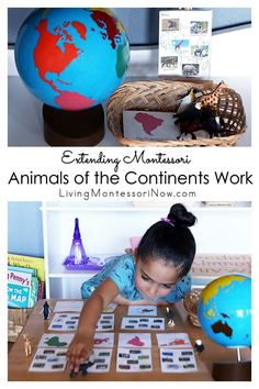 This Montessori animals of the continents uses animal figures and extends previous animals of the continents work for a variety of ages - Living Montessori Now #Montessori #homeschool #continentbox #zooanimals