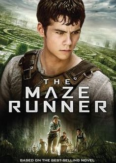 The Maze Runner, Movie on DVD, Action Movies, Adventure Movies, Sci-Fi & Fantasy Movies, ,  on DVD