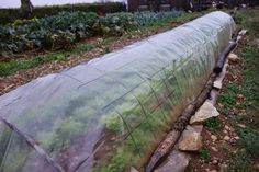 Utiliser le panneau de treillis soudé au jardin - Jardin et Maison