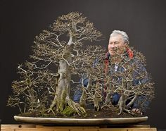 Walter Pall Bonsai Adventures