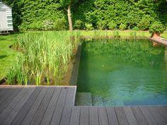 zo een heel natuurlijk vijvertje om te zwemmen erbij ... de planken hebben we al ...
