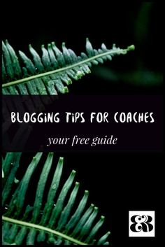 Learn how to blog effectively for your coaching business. Blogging tips for Life and Health Coaches.