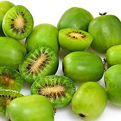 Kiwa௠ou Kiwi arguta 'Issai' Fruit Plants, Fruit Trees, Baby Kiwi, Building A Trellis, Edibles Online, Green Fruit, Flowering Shrubs, Different Plants, Tropical Fruits