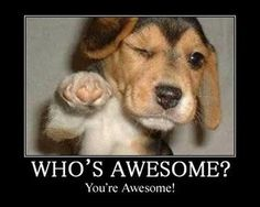 We are all awesome and need to get out there, do work, and spread that awesome among everyone we see today!!!! Don't forget to check out the Affiliate of ...
