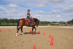 Confident Rider - Get Softness and Control - Figure 8 in a circle