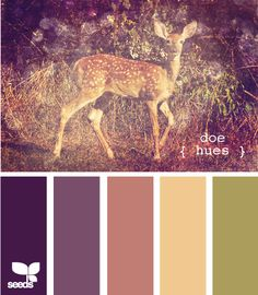 doe hues - I think this is the closest set to the green and purple I have picked for the guest room. I like the dark purple as an accent!