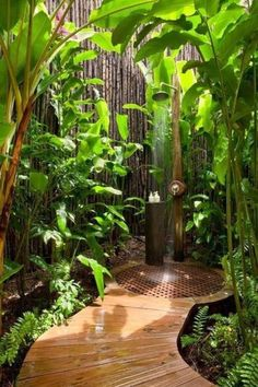 Check out this outdoor shower with greenery, long path, and bamboo.