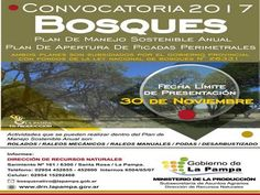 Bosques: plan de Manejo Sostenible Anual